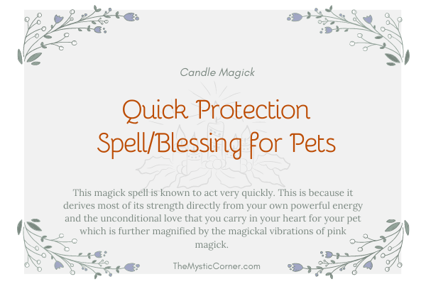 Quick Protection Spell and Blessing for Pets