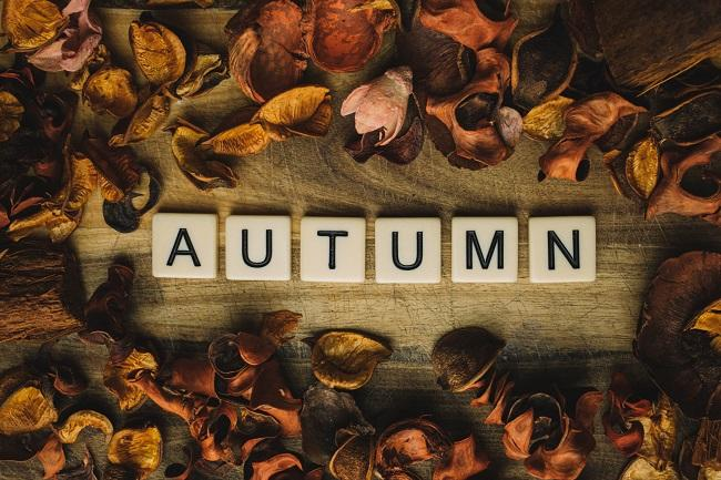 Autumn Letters by themysticcorner