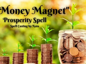 Money Magnet- Naia Moonbrook